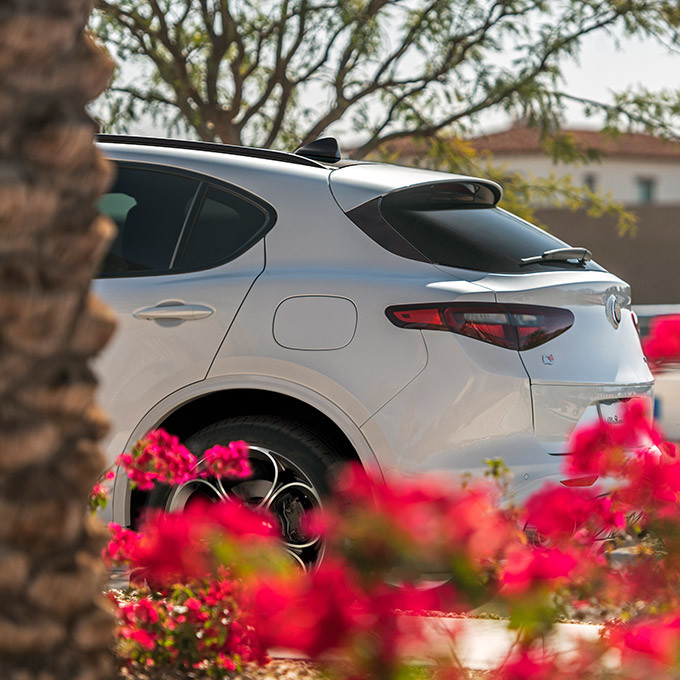 A side view of the rear side of an Alfa White 2021 Alfa Romeo Stelvio parked on a driveway and partially concealed by red flowers.