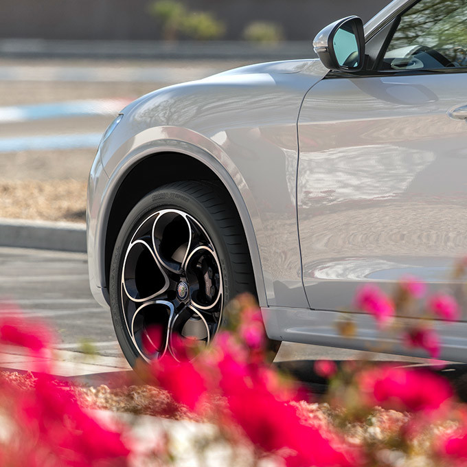 A side view of the doors and front wheel of an Alfa White 2021 Alfa Romeo Stelvio a road partially concealed by red flowers.