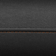 Leather-faced with perforated inserts – Black with Sepia accent stitching
