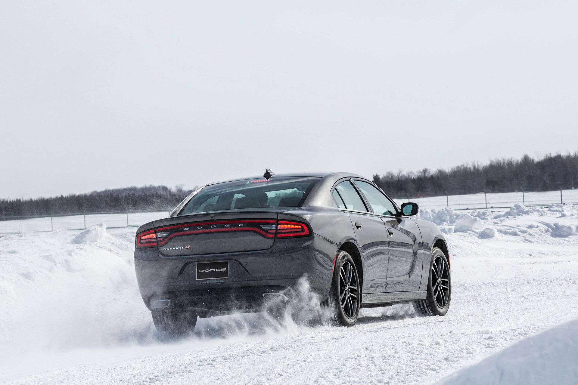 2019 Dodge Charger rear view of exterior, shown in silver