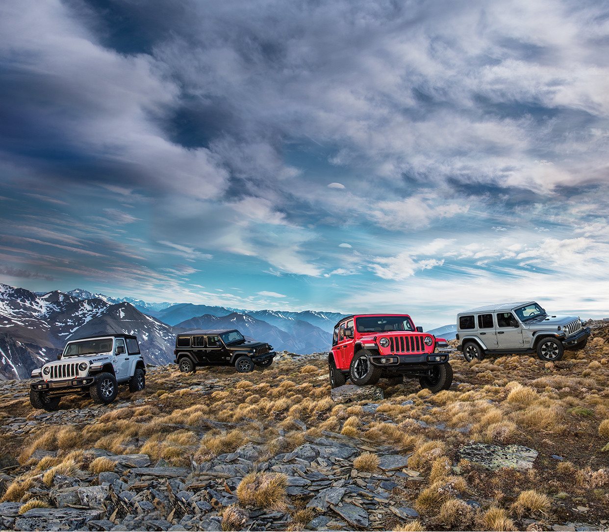 2019 Jeep Wranglers on a mountain