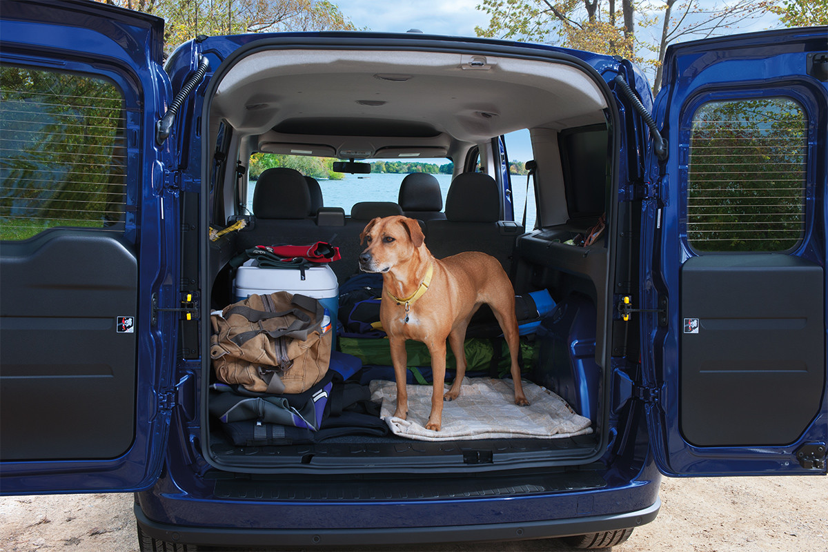 2019 Ram ProMaster City rear exterior view of cargo area with open doors, a dog stands close the edge