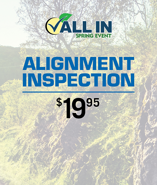 Alignment Inspection 19.95